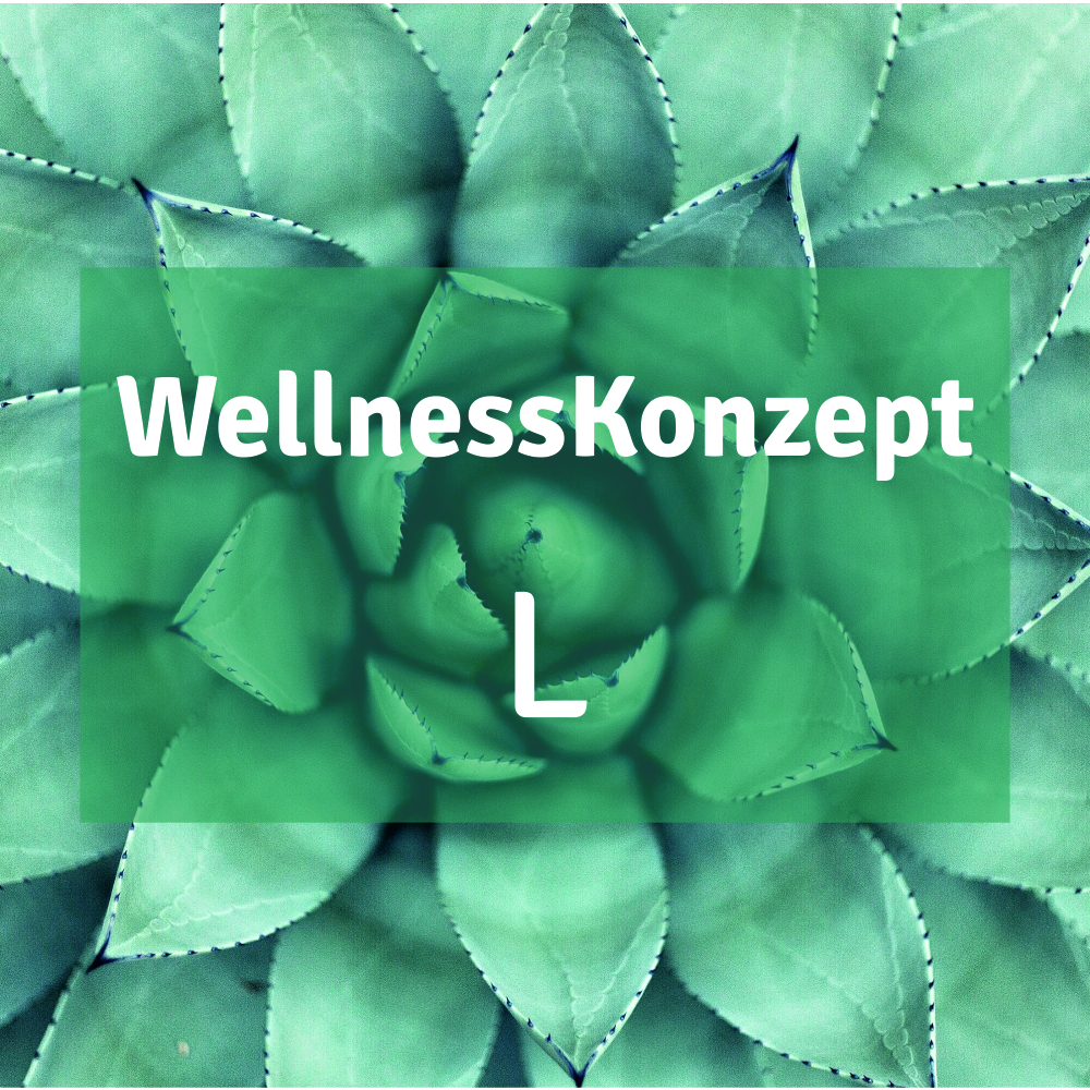 Massage | S-Konzept